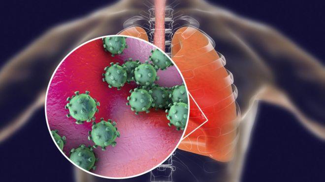 """Coronavirus: los nuevos detalles que revela el estudio """"más completo"""" publicado por China desde que comenzó el brote"""